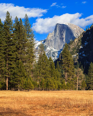 Yosemite Landscape with Half Dome