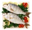 Pesce:mormore - Fish:mormore