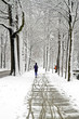 People jogging in winter in the forest