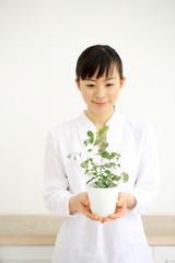 植物を持つ女の子