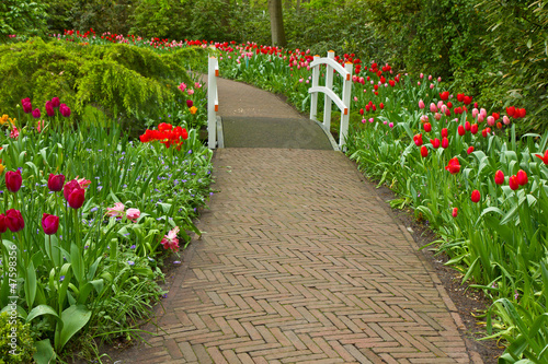 Stone walk way  in garden
