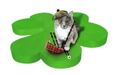 Cat with national simbols of Scotland