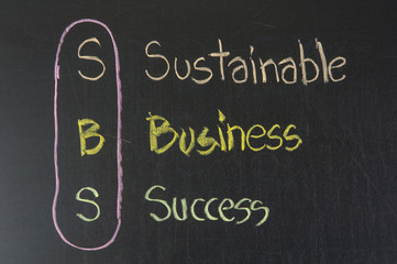 SBS acronym Sustainable Business Success