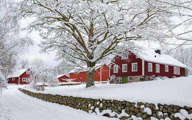 Characteristic Swedish settlement in winter season