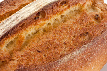 Bread close up showing texture