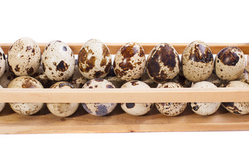 quail eggs on shelf