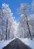 Fototapety verschneite Straße