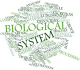 Word cloud for Biological system