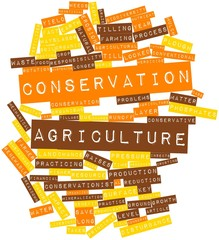 Word cloud for Conservation Agriculture