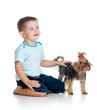 smiling child playing with a puppy dog isolated on white