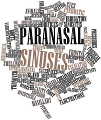 Word cloud for Paranasal sinuses
