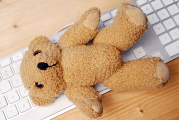 Teddy on Keyboard
