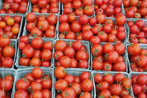 Pints of Tomatoes for Sale