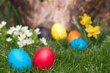 Fototapety Easter egs