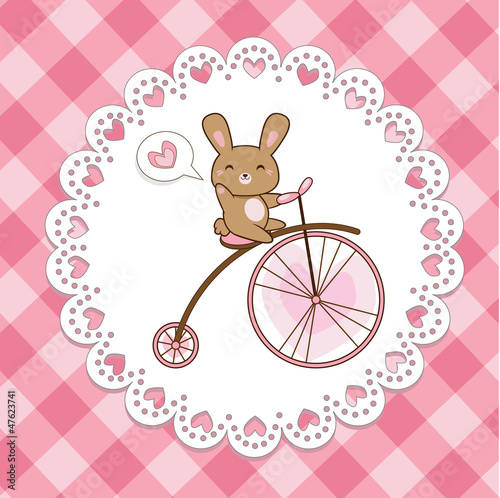 cute hare on a bicycle (vector)