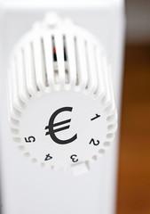 Euro Heizungsregler