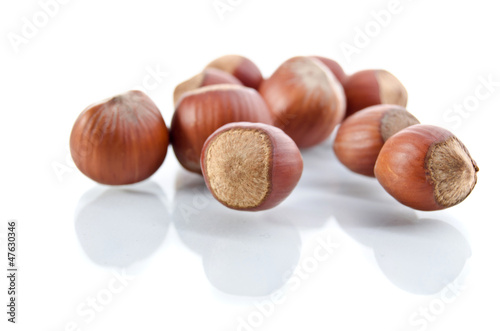 Nuts filberts isolated on white background.