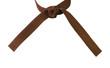Tied Karate Brown Belt