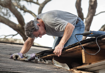 Man Examining and Repairing Rotten Leaking House Roof