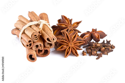 anise, cinnamon and carnation isolated on white background