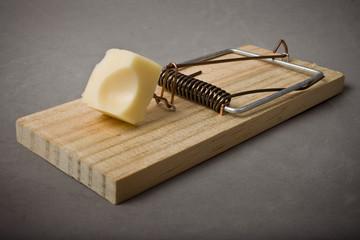 ratonera+ queso