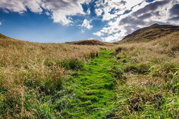 Footpath lead to the hill in Scotland