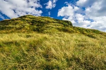 View of green hills in Edinburgh in summer