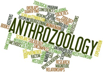 Word cloud for Anthrozoology