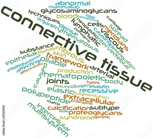 Word cloud for Connective tissue