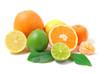 Zitrusfrüchten - citrus fruits