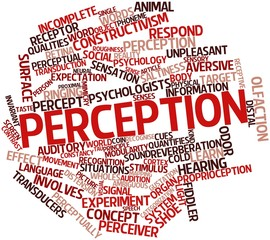 Word cloud for Perception