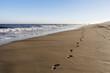 Leinwanddruck Bild - Die Spur am Strand 2
