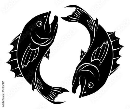 Stylised fish illustration - 47657187
