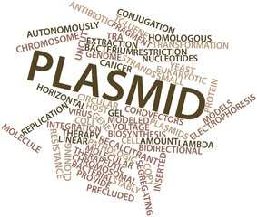 Word cloud for Plasmid