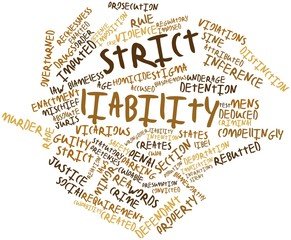 Word cloud for Strict liability
