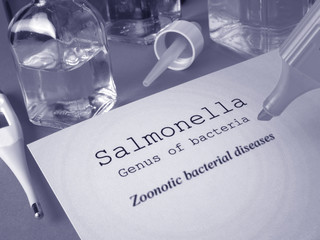 Salmonella infection