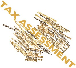 Word cloud for Tax assessment