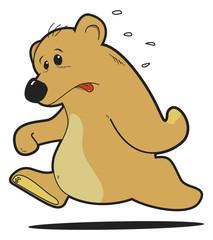 orso che corre