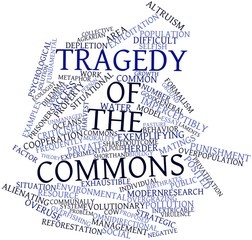 Word cloud for Tragedy of the commons