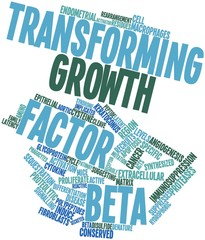 Word cloud for Transforming growth factor beta