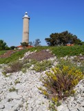 The lighthouse of Veli Rat on Dugi Otok in Croatia