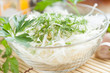 salad from cabbage and dill in a transparent bowl