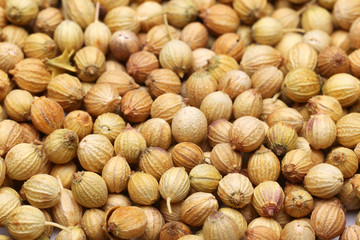 Coriander seeds background
