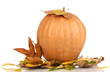 Ripe orange pumpkin yellow autumn leaves isolated on white
