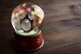 snow globe with snow flakes,beautiful holiday concept