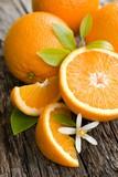 Fototapety Frische Orangen