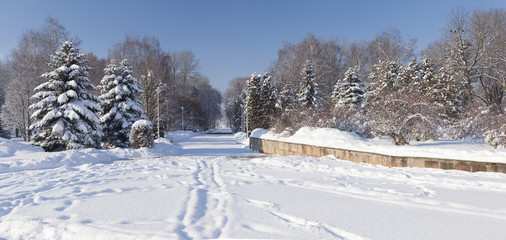 Beautiful winter landscape in the city park. Ternopil. Ukraine