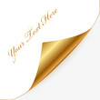 Vector gold and white note paper