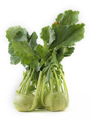 Fresh bunch of organic kohlrabi vegetable on white background al
