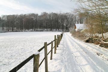 Ein Feld im Winter